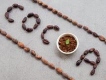 S?owa kakao robi? z kakaowymi fasolami zdjęcie royalty free
