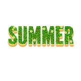Słowa lato z zielonymi liśćmi Zdjęcie Royalty Free