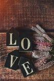 Słowa miłość od sześcianów z latem kwitną, tonowali, fotografia stock