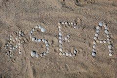 Słowa morze w Angielskim, rozkładający na piasku z skorupami obraz royalty free