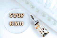 S?owa ZATRZYMUJ? GMO robi? drewniani listy w Petri naczyniu laboratorium Pr obraz royalty free