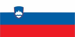 Słoweńska flaga Fotografia Stock