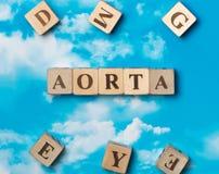 Słowo aorta zdjęcie stock