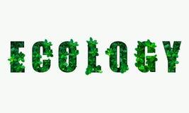 Słowo ekologia od zielonych liści obrazy stock