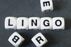 Słowo język na zabawkarskich sześcianach Zdjęcie Royalty Free