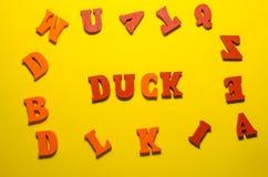 Słowo kaczka z drewnianymi listami obraz stock