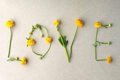 Słowo miłość robić kolor żółty kwitnie na zielonym pastelowym tle Minimalny miłości pojęcie Matka dzień i walentynki ` s dnia mie obraz stock