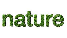 Słowo natura robić od zieleń liści odizolowywających na białym tle Obraz Stock