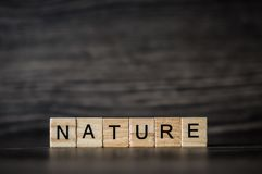 Słowo natura, składać się z lekcy drewniani kwadratowi panel na d zdjęcia stock