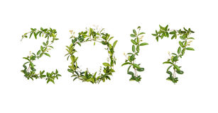 2017 słowo pełzacza kwiat Obrazy Royalty Free