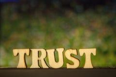 Słowo zaufanie robić drewniani listy na zielonym tle obrazy stock