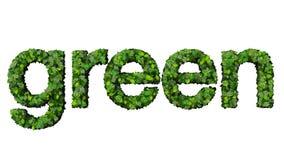 Słowo zieleń robić od zieleń liści odizolowywających na białym tle Fotografia Stock