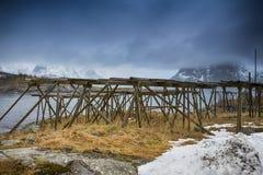 Słup budowy Robić dla dorsz osuszki procesu przy Lofoten wyspami Obraz Royalty Free