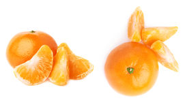 Słuzyć tangerine skład odizolowywający nad białym tłem Obraz Stock