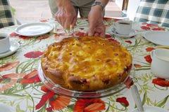 Słuzyć tort w ogródzie 05 Zdjęcia Royalty Free