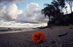 Słynne plaże Cleveland, Ohio obraz royalty free