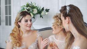 20s女孩在家坐长沙发并且喝从玻璃的香槟 股票视频