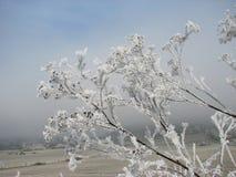 s视图冬天 库存照片