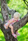 S'élever de bébé photographie stock libre de droits