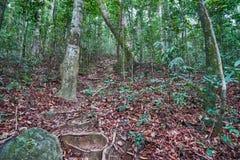 S'élever sur la colline Khoa Ra photographie stock
