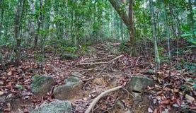 S'élever sur la colline Khoa Ra images libres de droits