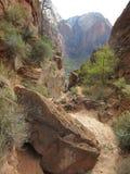 ` S Анджела приземляясь пеший путь, национальный парк Сиона, Юта Стоковая Фотография RF