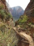 ` S Анджела приземляясь пеший путь, национальный парк Сиона, Юта Стоковое Изображение RF