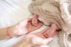 ` S мамы держа в ногах рук крошечных newborn младенца, покрытого knitte Стоковое Изображение
