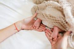 ` S мамы держа в ногах рук крошечных newborn младенца, покрытого knitte Стоковая Фотография
