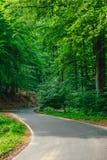 S-образная дорога асфальта Стоковая Фотография RF