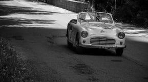 S 我 A T A AMICA 50 1951年 免版税库存图片