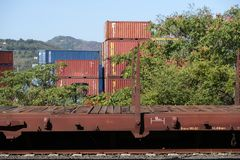 S 斯特凡诺马格拉河,拉斯佩齐亚,意大利,12/08/2016 火车站和容器集中处 免版税库存照片