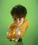 S-1211-Boy holding goldfish Stock Photography