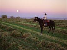 S-1385-cowboy bij zonsondergang Stock Foto