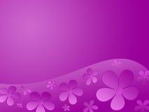 λουλούδια χρώματος ανα&s Στοκ Εικόνα