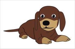 πορτρέτο s σκυλιών Στοκ εικόνες με δικαίωμα ελεύθερης χρήσης
