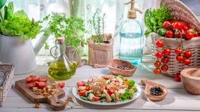 S'alad fait maison avec le poulet et les légumes Images libres de droits