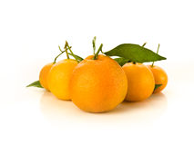 It's all about the orange. Beautiful shot of oranges with leafs lined Royalty Free Stock Image