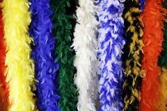 s'arrêter coloré de clavette de boas photographie stock libre de droits