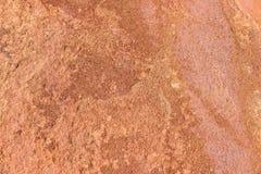 Sławni prehistoryczni rockowi rytownictwa Zdjęcie Stock
