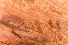 Sławni prehistoryczni rockowi rytownictwa Obrazy Stock