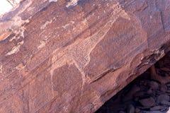 Sławni prehistoryczni rockowi rytownictwa przy Twyfelfontein Obrazy Stock