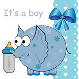 It's a baby boy  card Royalty Free Stock Photography