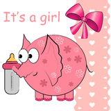 It's a baby girl  card. Stock Image