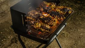Barbecue 3. It`s barbecue time with some juicy chicken steaks stock image
