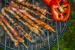 It's barbecue time! Stock Image
