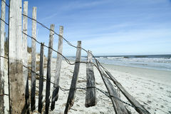 It's a Beach Kinda Day Royalty Free Stock Photo
