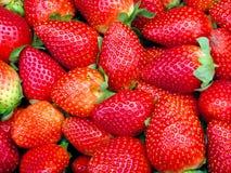 It's The Berries! Stock Photos