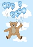 It's a boy bear Royalty Free Stock Photo