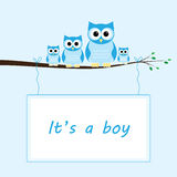 Its a boy Stock Photos